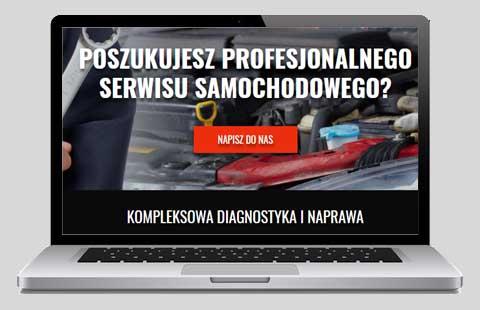 Przykład: strony WWW opolskie - muszala